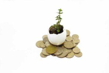 Kredyty bez bik Puszczykowo  zawnioskuj i wyślij sms o treści: WNIOSEK na 7393 (3.69 zł za sms)